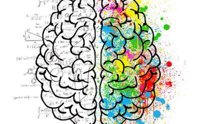 Soft skills #1 : la créativité