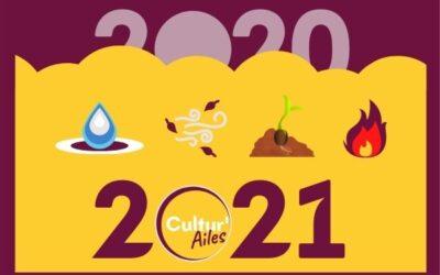 2020 sous le prisme des 4 éléments